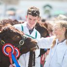 Grand Cattle Parade in 2019 Great Yorkshire Show