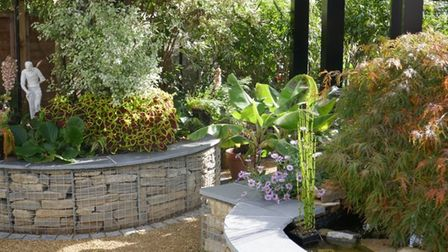 The garden at 102 Cambridge Road, Fleetville, St Albans, will be opening to the public this weekend.