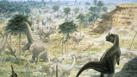 Ceratosaurus and Apatosaurus, who types of dinosaur which are believed to have roamed East Anglia