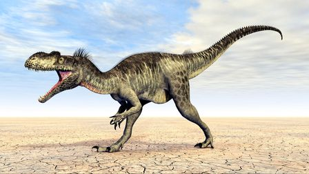 Computer generated 3D illustration with the Dinosaur Megalosaurus