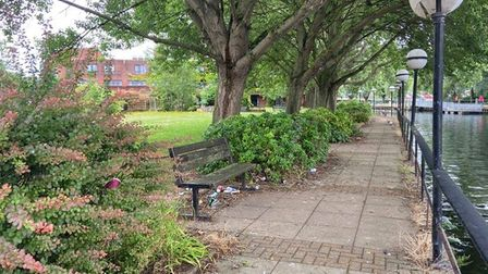 Neighbours say they are fed up with antisocial behaviour in the Riverside Premier Inn garden
