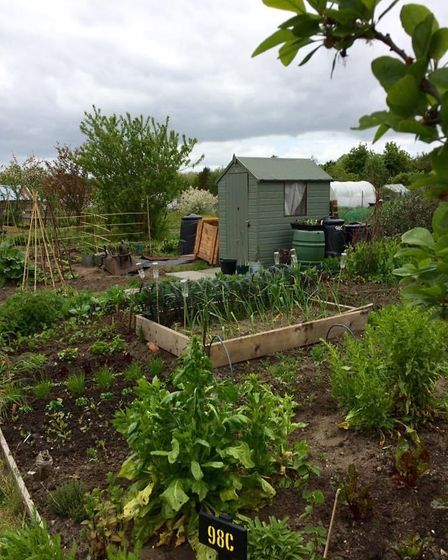 The allotment site is one of the council's biggest, with over 500 plots and nearly 200 on the waiting list