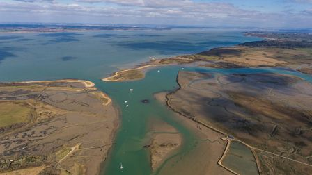 Explore inlets galore at Newtown Creek