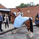 Arriving with the pony