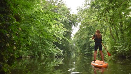 Paddleboarding on theRiver Wensum with Norwich Paddleboard Hire.