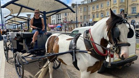 Kelly Murkin, 46, a landau driver in Great Yarmouth, with her horse Milo.