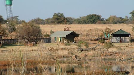 The camp south africa