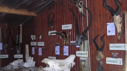 Curating a reserve museum