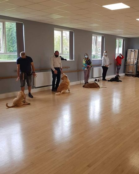Dog training class participants with their pets in Essex