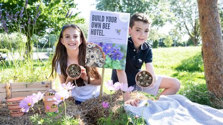 You can build your ownbee hotel at Rothamsted.