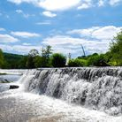 Claverton Weir in the sunshine, the water cascades off the side and is surrounded by trees.