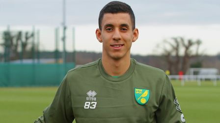 Norwich City striker Gassan Ahadme has linked up with Portsmouth on loan