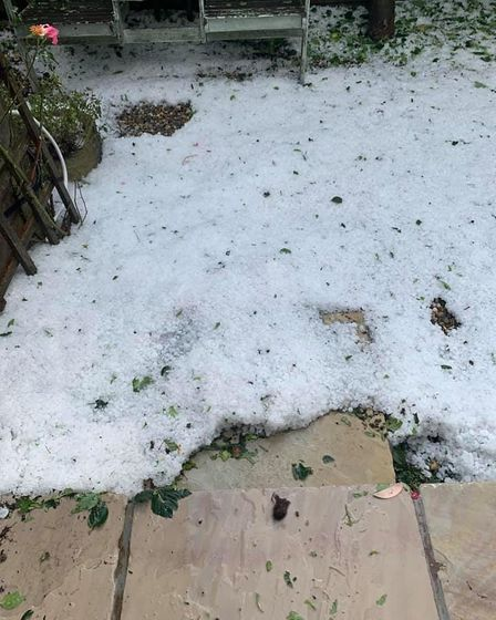 A patio meets grass. The grass is covered with hailstones.