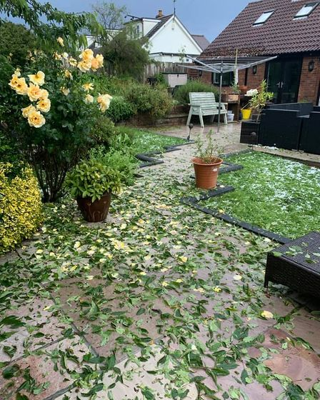 A garden is littered with fallen green leaves and large hailstones