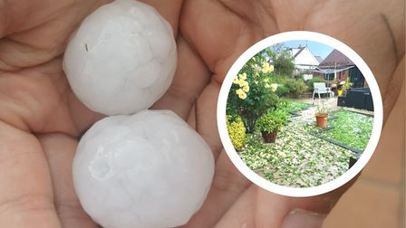 A montage: in the background - very large hailstones; inset - a destroyed garden