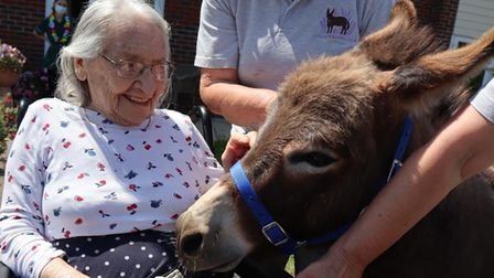 Miniature donkeys brightened the days of people living in a Kesgrave care home