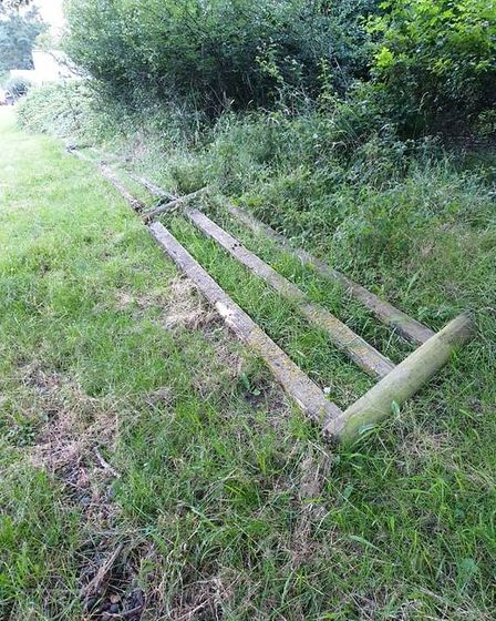 Deer grazing boundary to be shored up