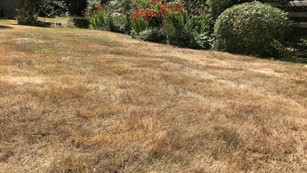 Don't worry if your lawn dries out in your absence— autumn rain will sort that out.