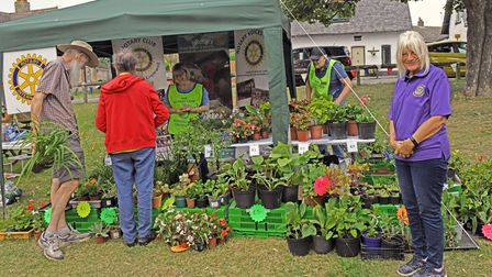 There were lots of stalls at the Brampton Fete on Saturdays and thousands of visitors.
