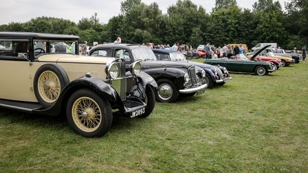 A row of classic and vintage cars parked on the grass at the Debden RBL-100 Vintage and Classic Vehicle Show