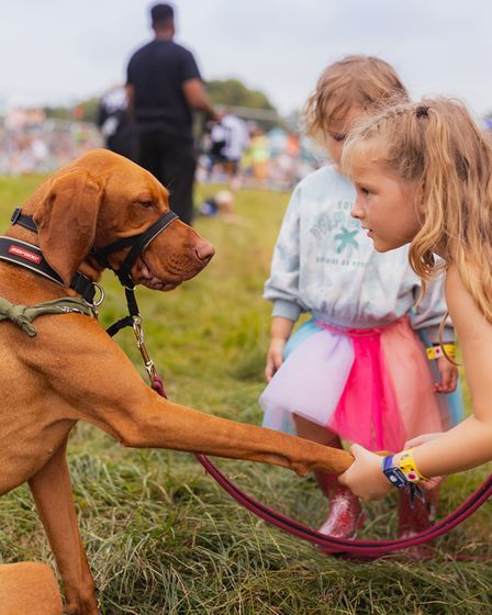 Young festival-goers meet a dog at Standon Calling Festival 2021.