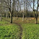 Huntingdonshire District Council's 'Loves Park Week' is taking placefrom July 23 to August 1.