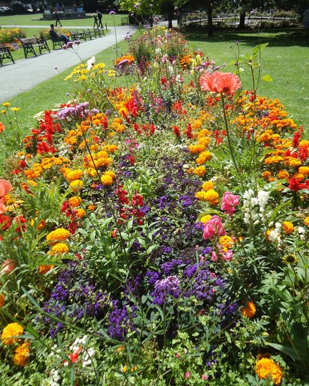 A colourful flower bed at Grove Park in Weston-super-Mare
