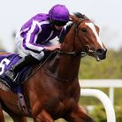 Joan Of Arc ridden by Ryan Lee Moore on the way to winning the Irish 1,000 Guineas Trial (Group 3) at Leopardstown Racecourse