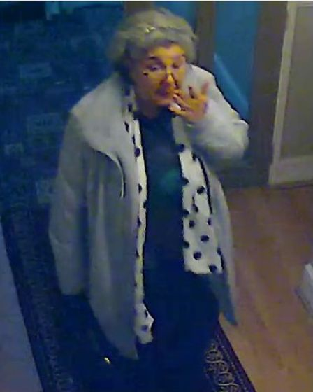 Lulu Lakatos at a Cricklewood hotel where she stayed the night before a £4.2 million diamond heist in Mayfair