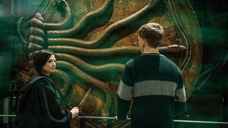 Fans in front of Chamber of Secrets door at The Warner Bros. Studio Tour London – The Making of Harry Potter
