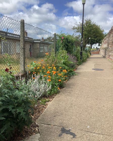 Community garden Great Yarmouth town wall