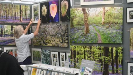 Paintings will beon show at theCraft In Focus contemporary craft and design fair at RHS Garden Hyde Hall in Essex.