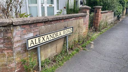 Residents were split over what should be done about the Horse Chestnut Tree on Alexandra Road
