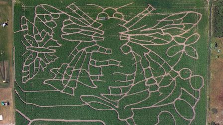 An aerial view of Southwold Maize Maze, 2018. Photo: Mike Page