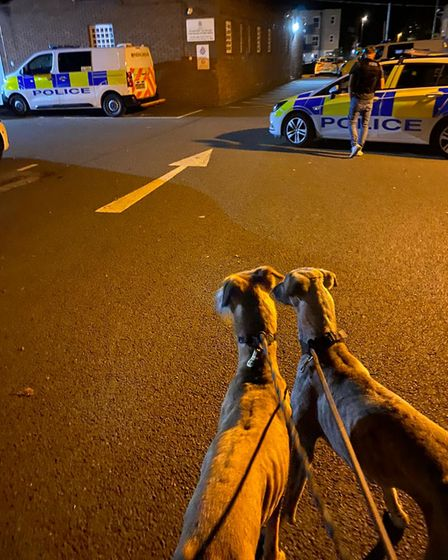 Police were called to a report of hare coursing.