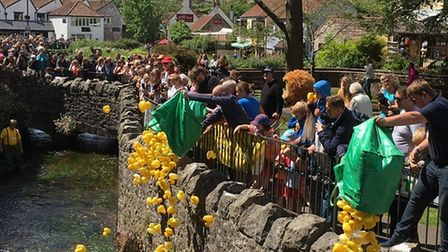 Cheddar Vale Lions Club Duck Race returns on August 30.