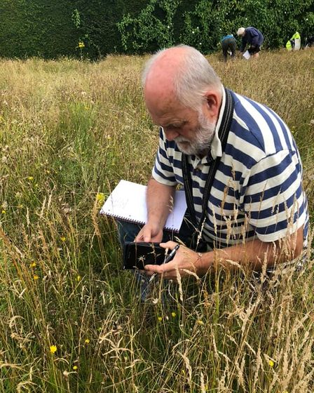 Citizen scientists conducted a wildlife survey at Norwich's former lawn tennis courts.
