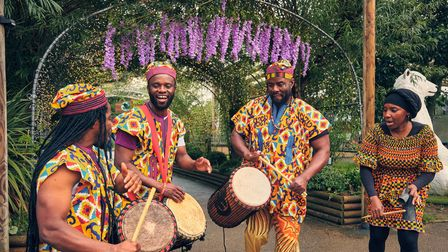 African drummers at Summer Evenings in Paradise atParadise Wildlife Park in Hertfordshire.
