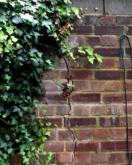 A cracked garden wall in South Hampstead