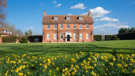 A red-brick house behind a lawn with daffodils in front of it