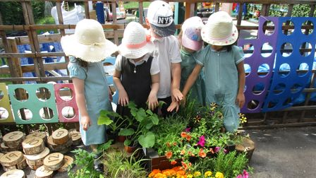 Children at Ashtree Primary and Nursery in Shephall have been caring for the plants and flowers in their new sensory garden