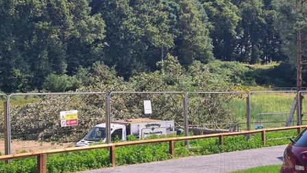 Residents have expressed their despair as trees were felled at the end of their drive