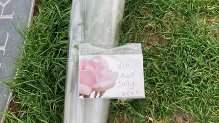 A rose left at the feet of the statue ofSir Ebenezer Howard in Welwyn Garden City with the words'RIP Aunt Sally'.