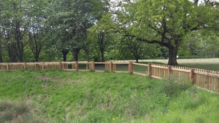 Wooden planks have been removed from fencingthat surrounds a pond in St Ives' Berman park.