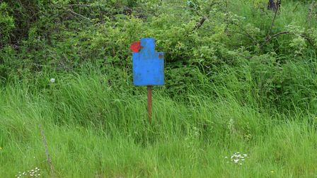 A blue steel shooting target by a hedge in a field of grass
