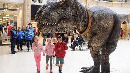 Families are amazed to see a T Rex called Donald entertaining the children at the Castle Quarter. Pi