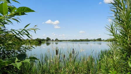 Andy Taylor sent us this image which he took at Hinchingbrooke Park in Huntingdon.