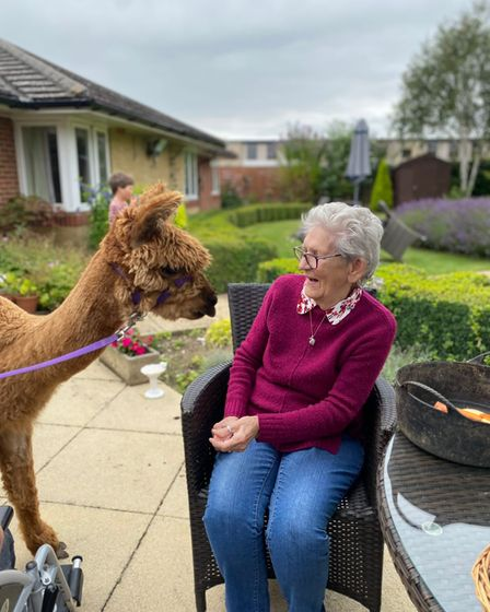 Woodside House residents had two special visitors when alpacas Bumble and Bee came to the house.