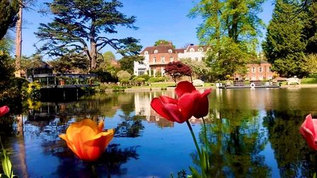 The beautiful gardens of St Michael's Manor in St Albans.
