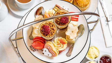 Norwich Assembly House's new autumn themed afternoon tea.